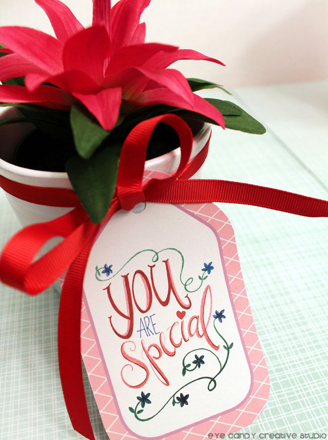 flower pot, you are special, plant, gift ideas, free gift tags, floral design