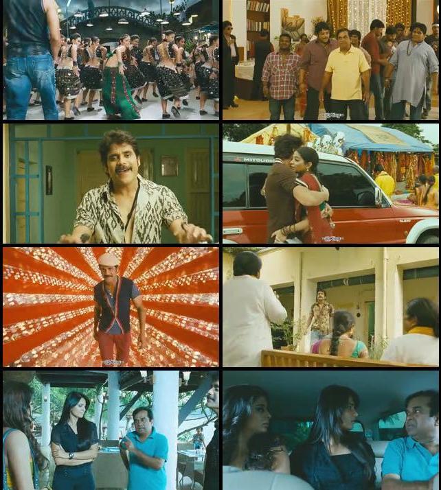 Ragada 2010 Hindi Dubbed 480p BRRip