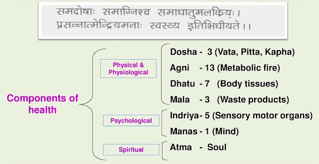 Definition of Health in Ayurveda
