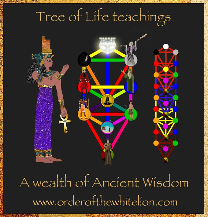 Tree of Life - Spiritual Tool