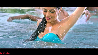 Riya Sen Beautiful Bollywood Actress  ~  Exclusive 006.jpg