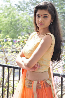 Actress Pallavi Naidu Stills in Half Saree at Lord Shiva Creations New Movie Launch 0015.jpg