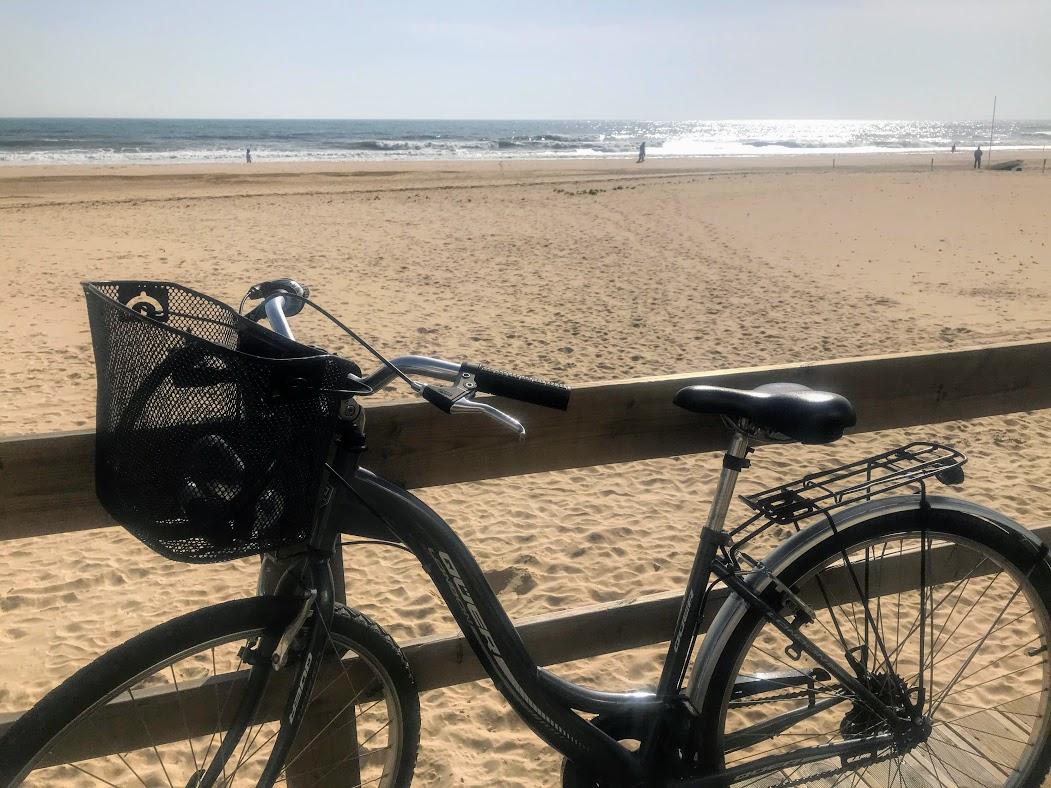 42c2ff787 Llega Fitur 2019 y claro el Algarve no podía faltar. Allí estará para  presentar su tesoro natural  más de 200 kilómetros de costa entre playas de  arena y ...