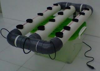 cara menanam hidroponik dengan botol bekas,cara menanam hidroponik sederhana di pekarangan,cara menanam hidroponik tomat,cara menanam wortel dalam polybag,cara menanam hidroponik dengan media air,