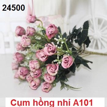 Phu kien hoa pha le tai Co Loa