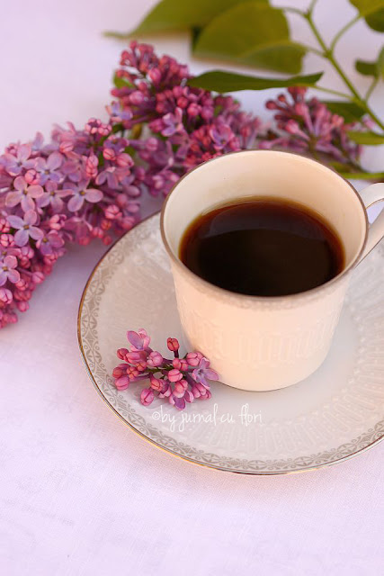 ceasca cafea si flori de liliac  coffe cup and lilac flowers jurnal cu flori