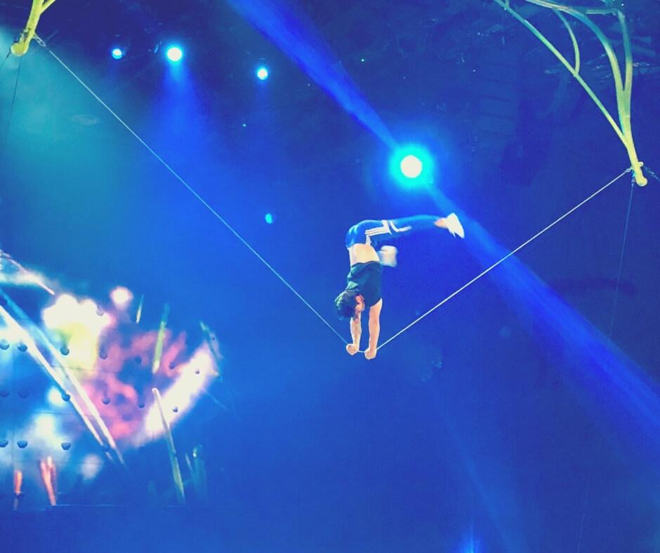 Artist in Cirque Du Soleil OVO rehearses before premiere