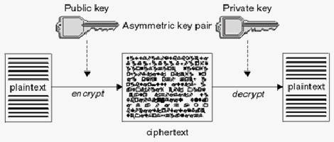 Rifqi S Blog Algoritma Simetris Dan Algoritma Asimetris