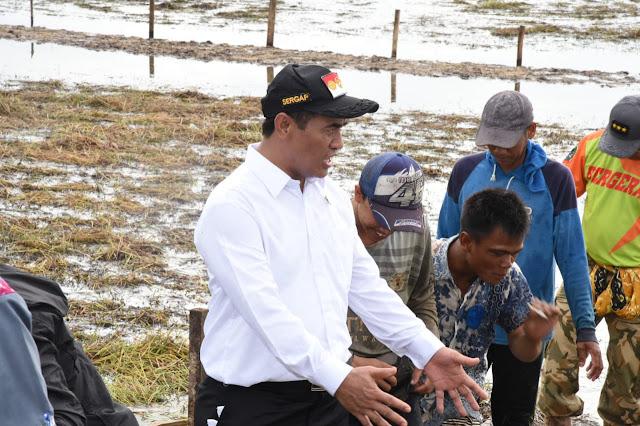 Jelang Peringatan HPS Tahun 2018, Kalsel Akan Buka 750 Hektar Lahan Pertanian