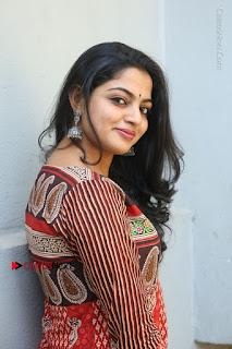 Telugu Actress Nikhila Vimal Latest Stills in Anarkali Dress  0112.JPG