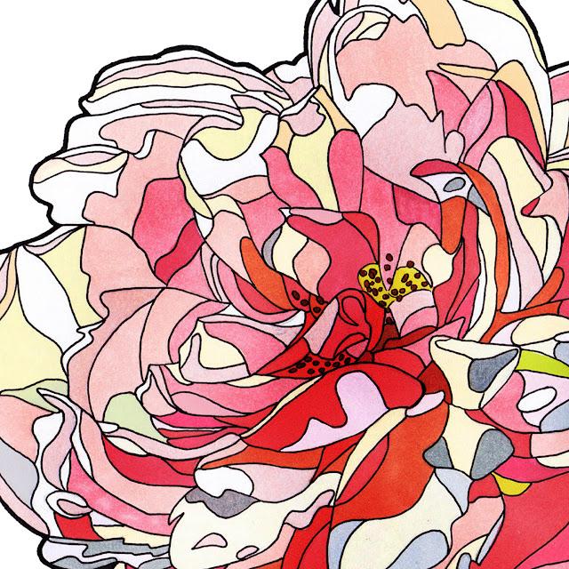 fiore-rosa-particolare-pink-flower-detail
