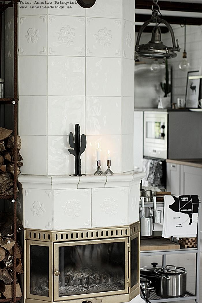 kaktus prydnad, stilren, stilrena, present, presenttips, presenter, födelsedagspresent, webbutik, webshop, webbutiker, annelies design, nettbutikk, cactus, serveringsvagn, industriellt, industri, industrikök, kök, inredning, ved, vedförvaring, diy förvaring, vedstapel, design, annelie palmqvist