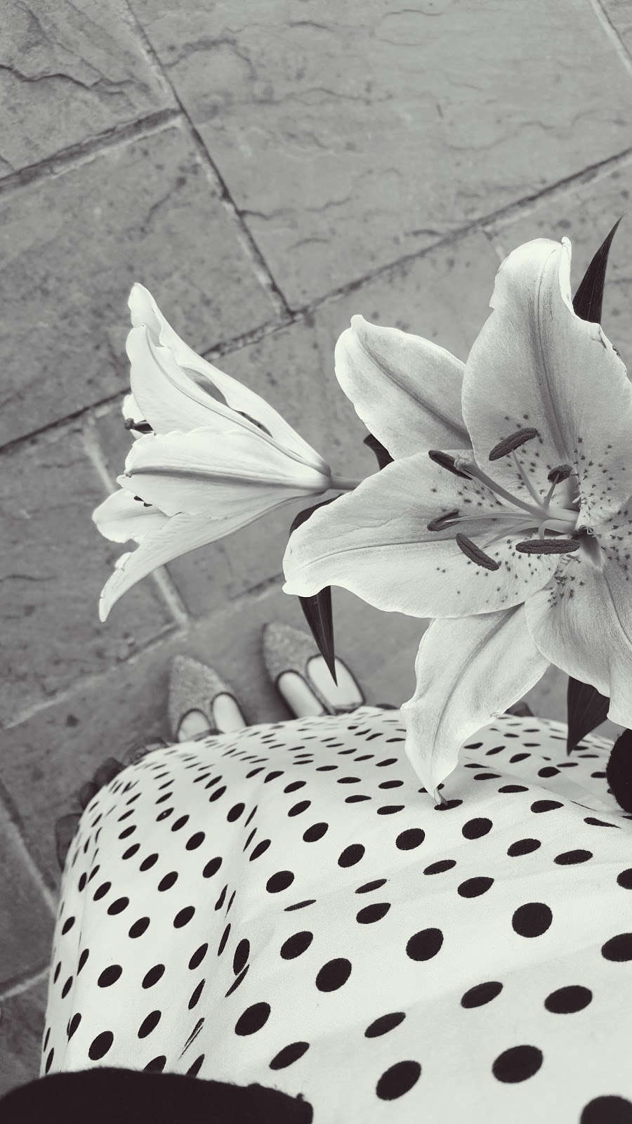 Polka Dots And Flowers: How Beautiful Are Lillies?