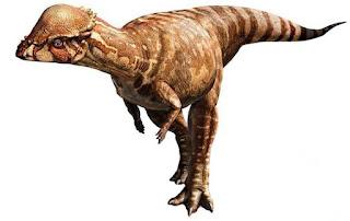 Acrotholus Nasıl Bir Dinozor