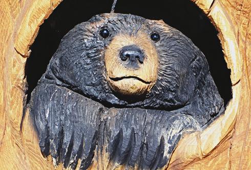 bear country usa south dakota