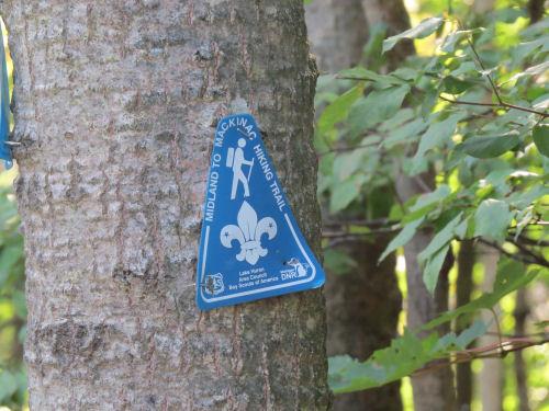 Midland to Mackinac Trail marker