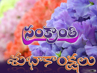 Makar Sankranti 2013 Pongal Greetings Wallpapers