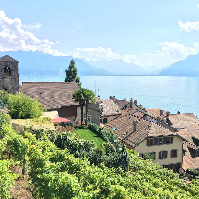 Old Town of St. Saphorin in Lavaux, the wine terraces of Switzerland