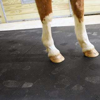 Greatmats horse stall mats black