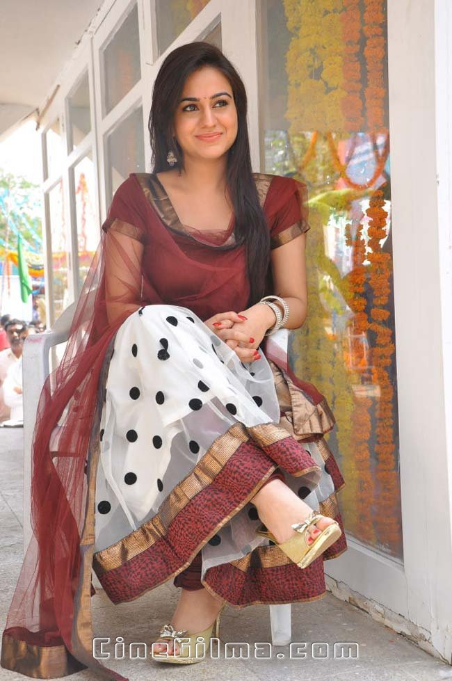 All Stars Photo Site Telugu Actress Aksha Latest Photo -9979