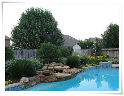 Landscape Design Online: July 2011
