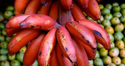 الموز الاحمر