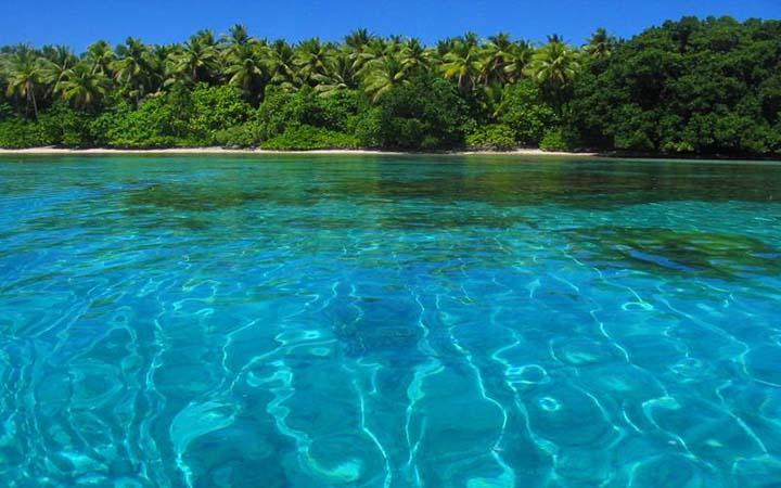 deniz ve sahilde yaz resimleri