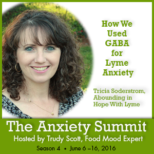 Anxiety Summit Using GABA for Lyme Anxiety