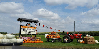 pumpkinland in orange city, iowa