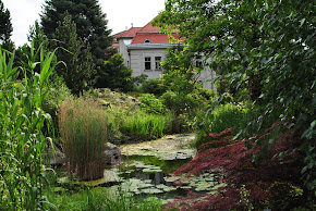 BOTANICAL GARDEN UNIVERSITY INNSBRUCK