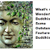 What's so Wonderful about Buddhism? Some Outstanding Features of Buddhism
