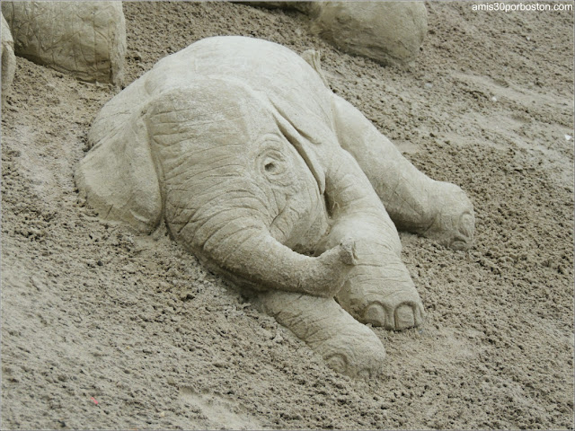 "Esculturas de Arena de Revere Beach:  ""Save the Elephants"" de Paul Hoggard"