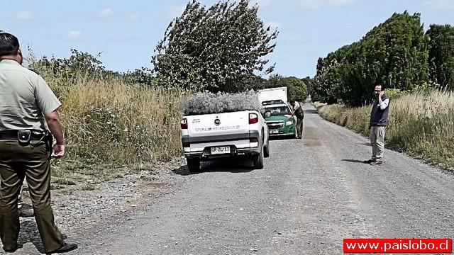 Delincuentes abandonan conductor y camión repartidor asaltados en Osorno