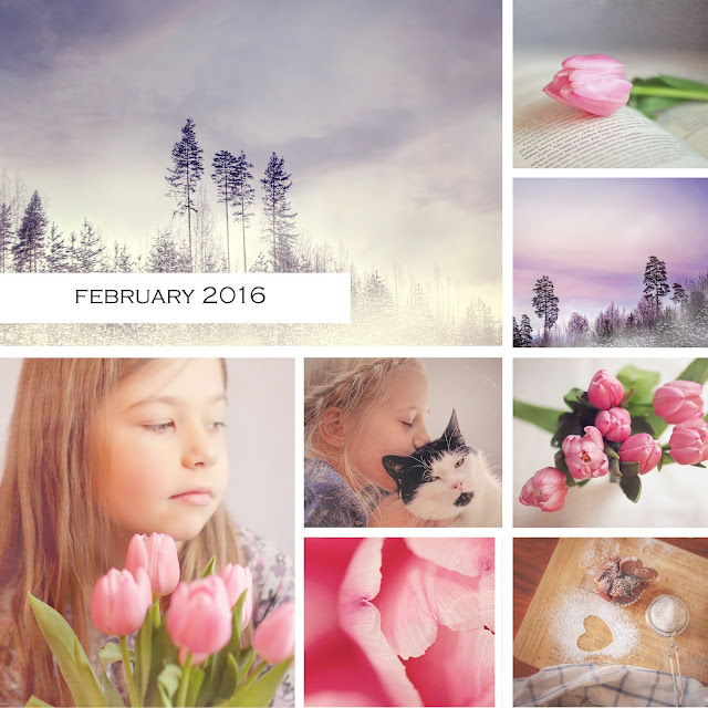 Color Of The Month February 2016: Mona's Picturesque: A Month In Photos {February 2016}