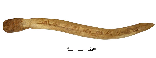 Ornamented artefact may indicate long-distance exchange between Mesolithic communities