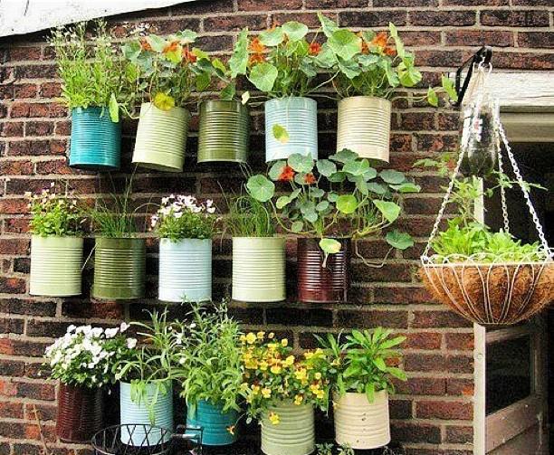 Mini jardines sencillos y encantadores desde jalisco - Jardines sencillos ...