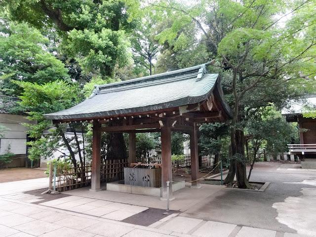 渋谷氷川神社,手水舎〈著作権フリー無料画像〉Free Stock Photos