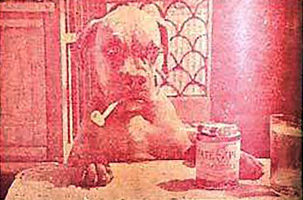 โจโฉ สุนัขแสนรู้ของพระบาทสมเด็จพระเจ้าอยู่หัว