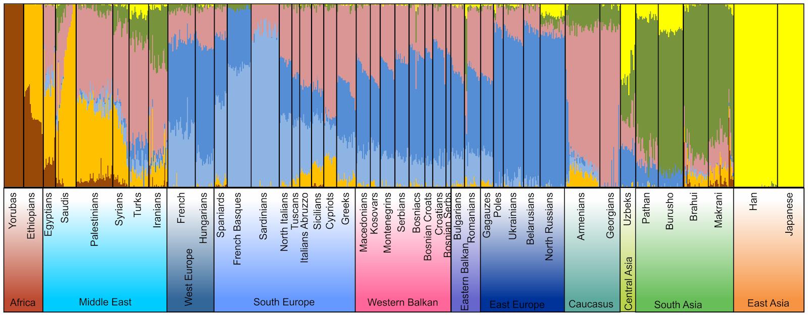 South Slavic DNA Blog: South Slavic Origin And I2a-Dinaric