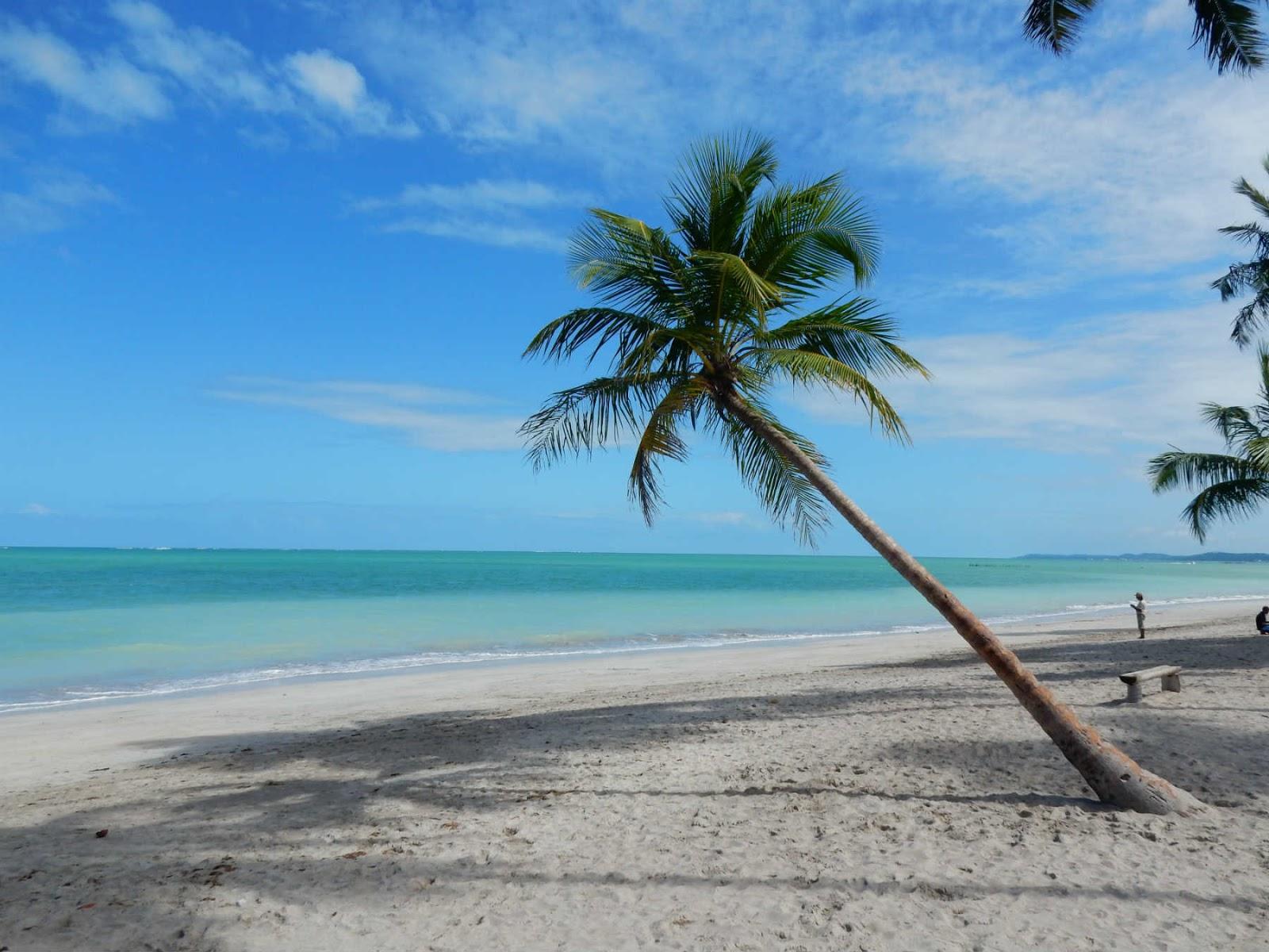 Roteiro Alagoas fonte: 4.bp.blogspot.com