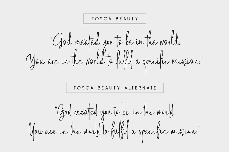 Tosca Beauty Handwritten Signature Font Free Download Free Script