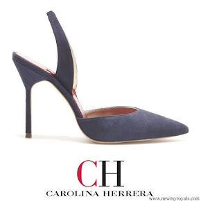 Queen Letizia wore Carolina Herrera High heel slingback blue pumps