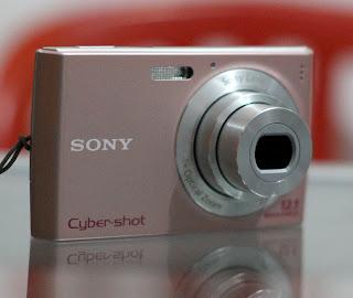 Kamera Bekas Sony DSC-W510