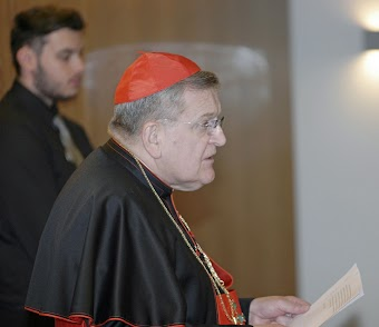 """Tình hình trong Giáo hội đang """"Rất đáng báo động"""" - Hồng y Burke"""