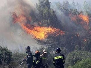 Ηλεία: Υπό έλεγχο η φωτιά στην περιοχή Διάσελλα