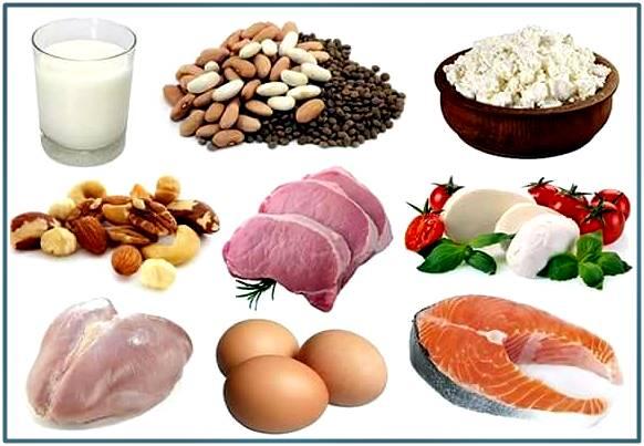 Fuentes de proteína que te ayudan a bajar de peso