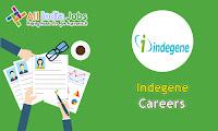 Indegene Recruitment