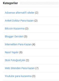 Blogger'da Kategori Nasıl Oluşturulur? Blogger Kategoriye Yazı Nasıl Eklenir?