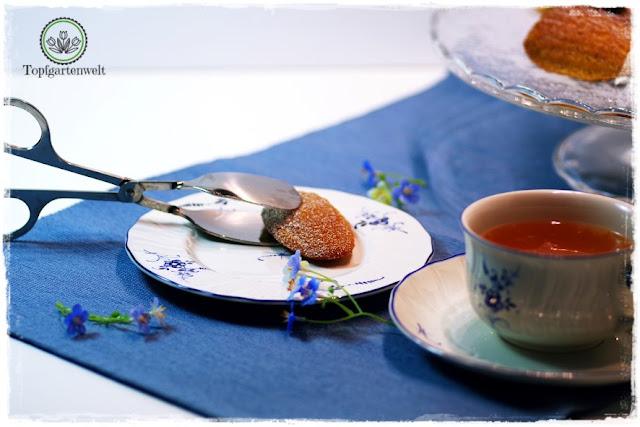 Gartenblog Topfgartenwelt Buchtipp Französisch Backen mit Rezept für Madeleines: französische Süßspeise für den Nachmittagskaffee