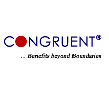 Congruent Solutions Limited Walkin for Freshers On 07th to 28th Apr 2017